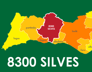 free tax delivery Silves