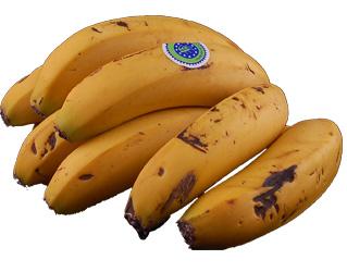 banana madeira