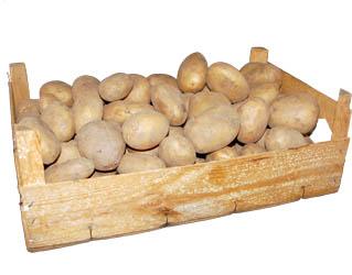 potatoes 10kg box