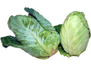 heart cabbage