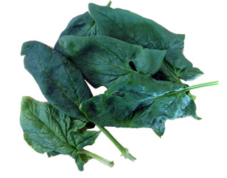 spinach large leave