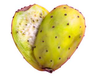 india fig