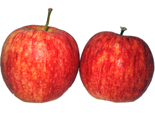 maçã jonagorred