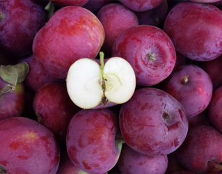 maçã vista bela