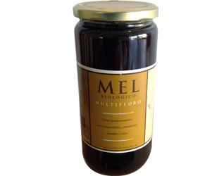 multiflorous honey casa do couto 1kg