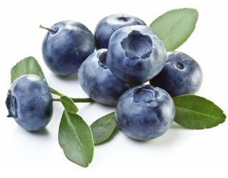 blueberry 125gr