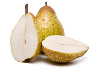 rock pear